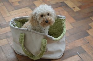 Small dog tote bag