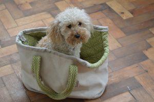 Small dog tote bag